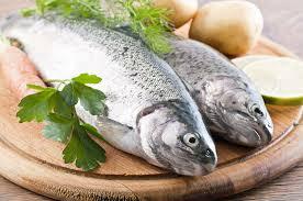 Propiedades del pescado