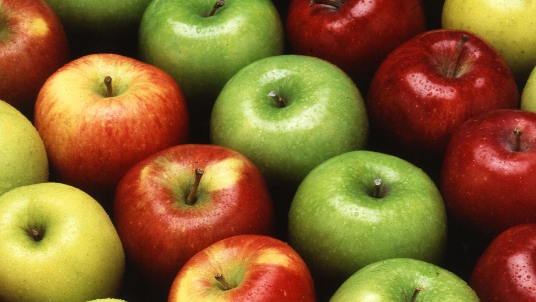 Células madre de manzana